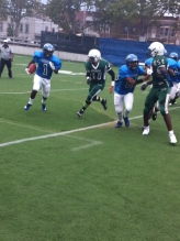 4559 -- Canarsie running back follows blockers as he turns the corner for positive yardage.