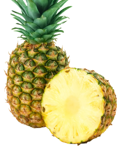 pineapple_PNG2754